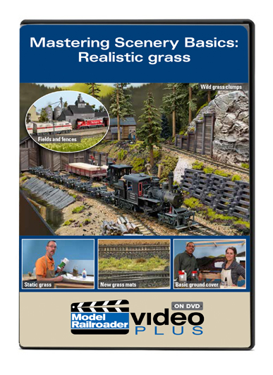 Mastering Scenery Basics: Realistic Grass DVD